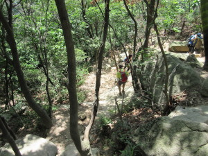 Trail Heading Down, Byungtae Leading
