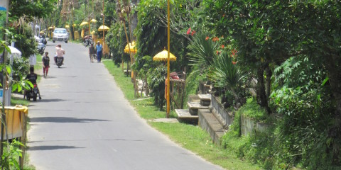 Pictures of Bali Part 1 – A Drive in The Ubud Countryside