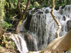 Ifrane.09.Waterfall