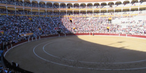 Madrid:  Where I Go To A Bullfight…and Leave