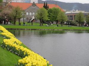 Bergen.07.FlowersWithLakeBuilding